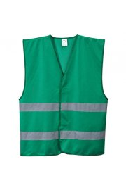 F474 Iona Hi Vis Vests (Small To 3XL)